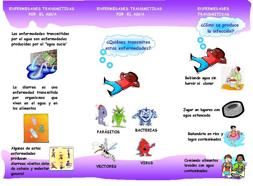 Vehiculos de transmision de enfermedades por el medio ambiente